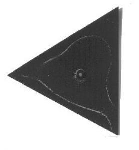 Chaldni Figure 2