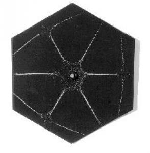 Chladni Figure 14